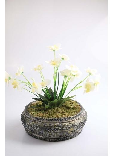 Kibrithane Çiçek Yapay Çiçek Beton Saksı Mini Beyaz Kumaş Orkide Kc00200804 Renkli
